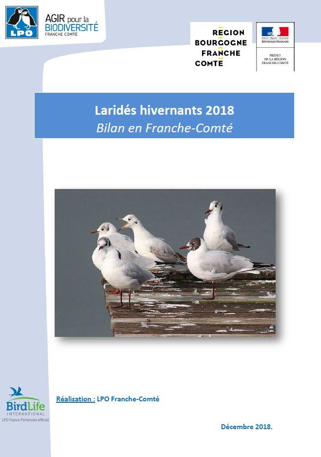 https://cdnfiles2.biolovision.net/franche-comte.lpo.fr/userfiles/observer/Larideshivernant/2018BilanlaridsFINALcouv.jpg