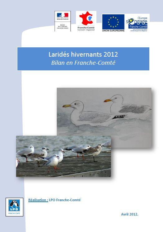 https://cdnfiles2.biolovision.net/franche-comte.lpo.fr/userfiles/observer/Larideshivernant/PagedecouvLarids.jpg