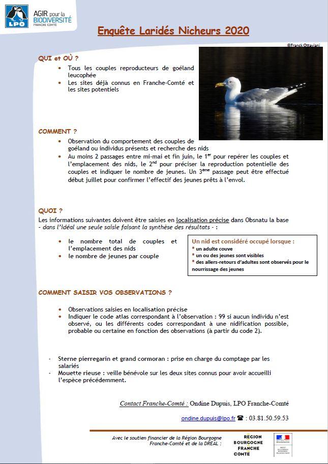 https://cdnfiles2.biolovision.net/franche-comte.lpo.fr/userfiles/observer/Laridesnicheurs/Photonotemthodo.JPG