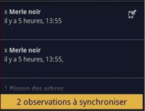 https://cdnfiles2.biolovision.net/franche-comte.lpo.fr/userfiles/observer/Naturalist/11synchro.jpg