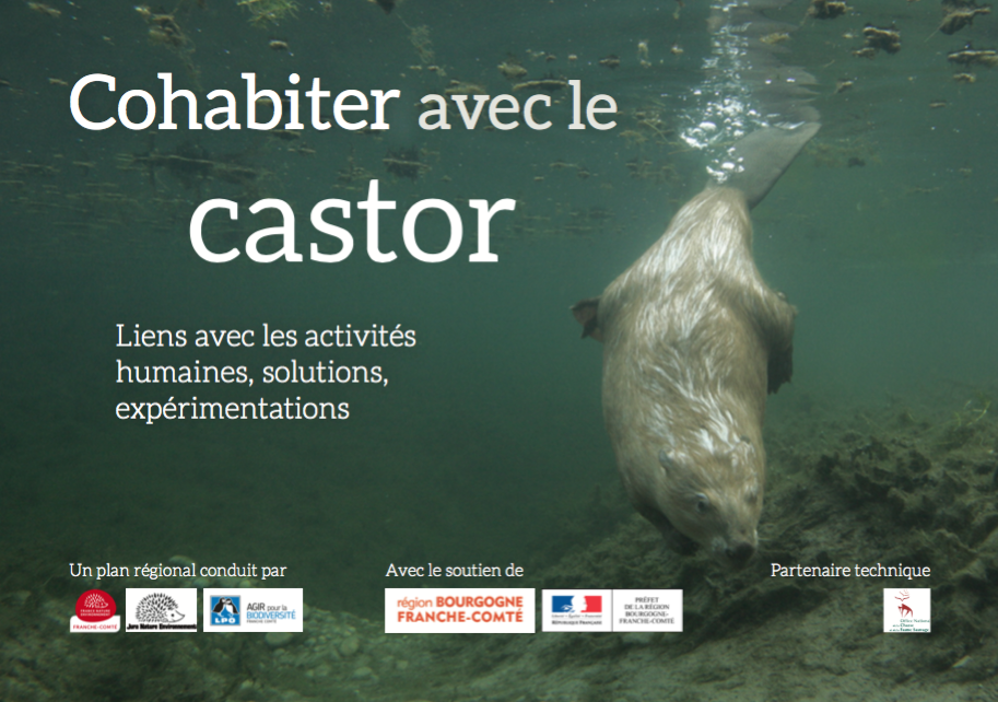 https://cdnfiles2.biolovision.net/franche-comte.lpo.fr/userfiles/publications/Capturedcran2016-05-1015.19.19.png
