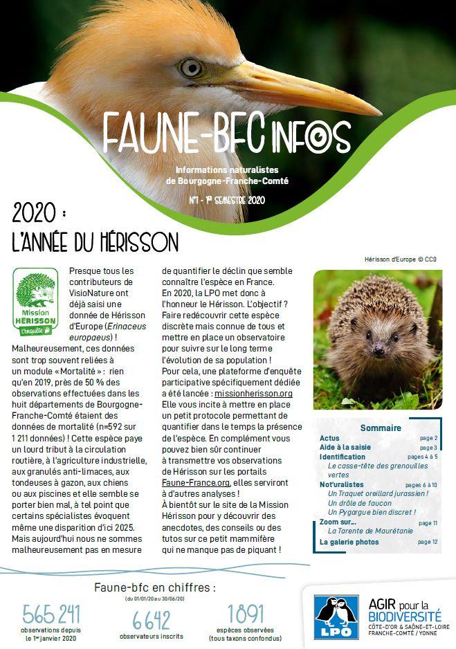 https://cdnfiles2.biolovision.net/franche-comte.lpo.fr/userfiles/publications/Obsnatubulls/FauneBFCInfosn12020.jpg