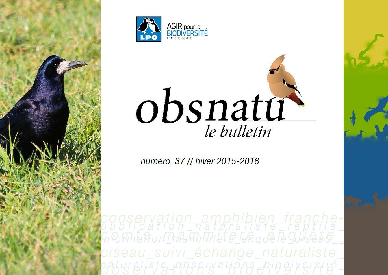 https://cdnfiles2.biolovision.net/franche-comte.lpo.fr/userfiles/publications/Obsnatubulls/Obsnatun37hiv2015couv.jpg