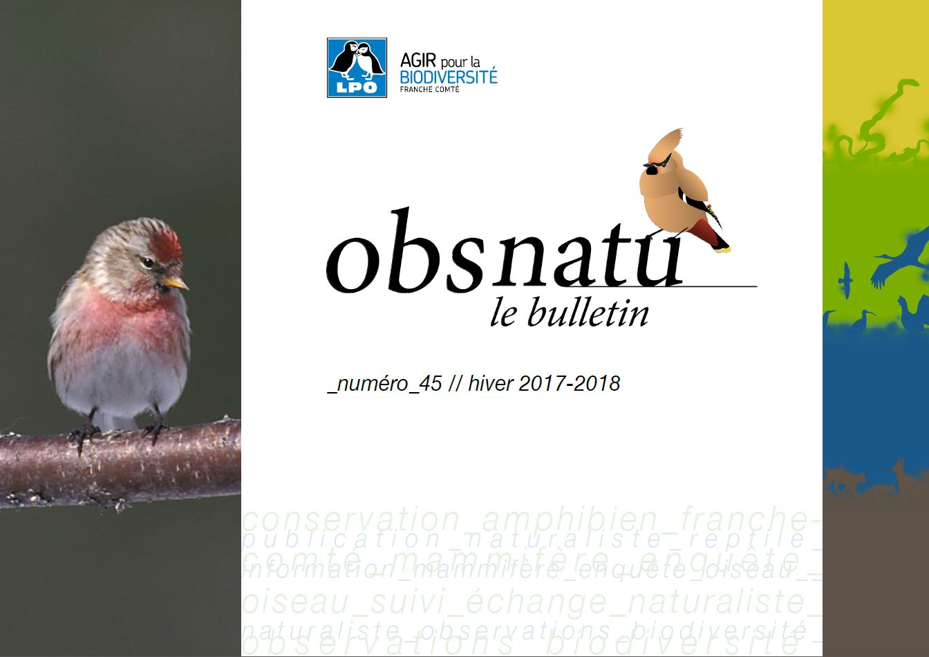 https://cdnfiles2.biolovision.net/franche-comte.lpo.fr/userfiles/publications/Obsnatubulls/Obsnatun45hiver2017-2018couv.jpg