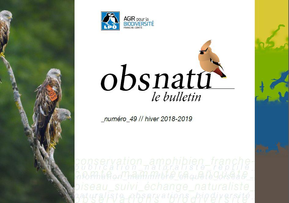 https://cdnfiles2.biolovision.net/franche-comte.lpo.fr/userfiles/publications/Obsnatubulls/Obsnatun49hiv2018couv.jpg