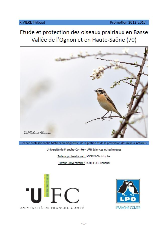 https://cdnfiles2.biolovision.net/franche-comte.lpo.fr/userfiles/publications/rapportsstages/2013StageOiseauxprairiauxTRivirecouv.jpg