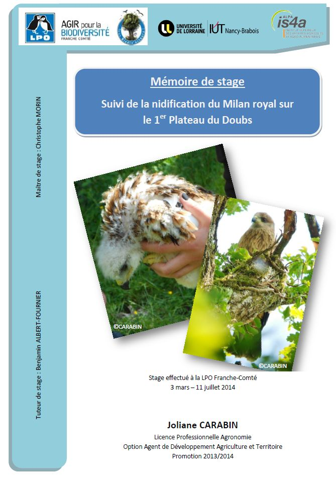 https://cdnfiles2.biolovision.net/franche-comte.lpo.fr/userfiles/publications/rapportsstages/2014StageMilanroyalJCarabincouv.jpg