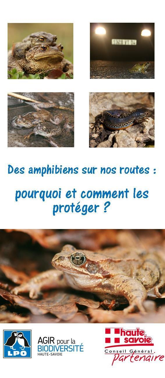 https://cdnfiles2.biolovision.net/haute-savoie.lpo.fr/userfiles/plaquettesamphibiens.jpg
