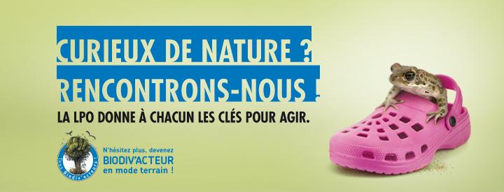https://cdnfiles2.biolovision.net/vienne.lpo.fr/userfiles/BiodivactDecouvrirGrenouille.jpg