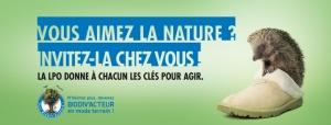 https://cdnfiles2.biolovision.net/vienne.lpo.fr/userfiles/BiodivactInviteznatureHerissonVign.jpg