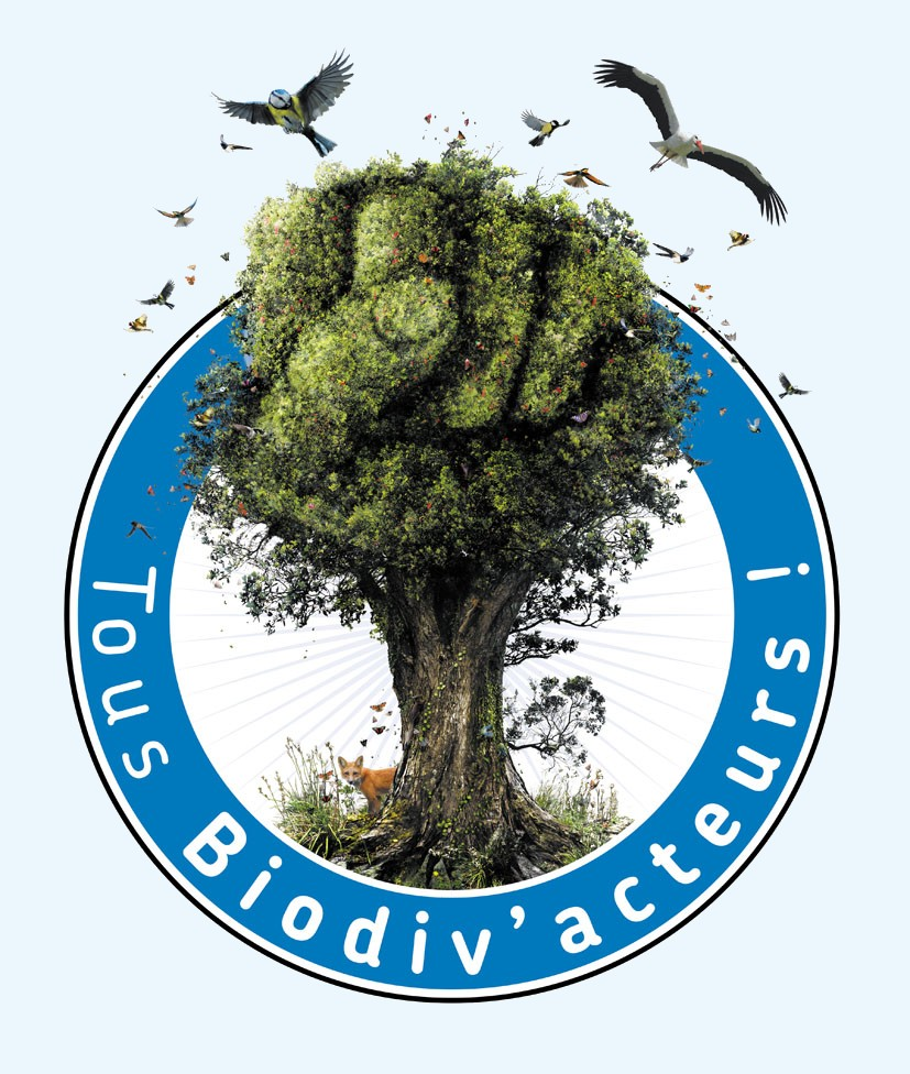 https://cdnfiles2.biolovision.net/vienne.lpo.fr/userfiles/telechargements/StylFM/Logobiodivacteur-petit.jpg