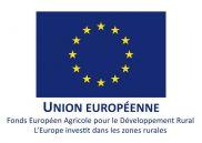 http://www.europe-en-alsace.eu/