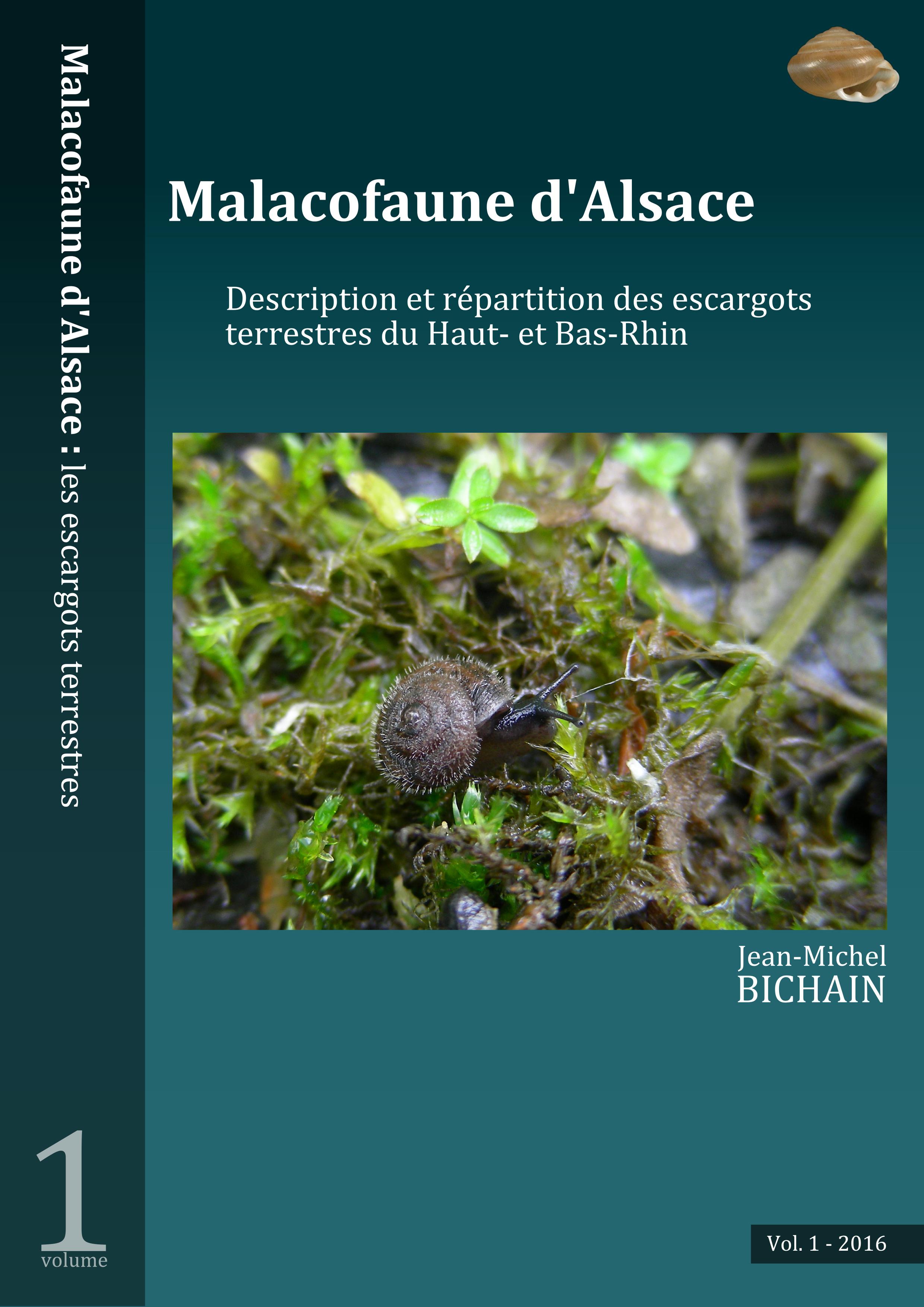 https://cdnfiles2.biolovision.net/www.faune-alsace.org/userfiles/mollusques/escargot2016.jpg