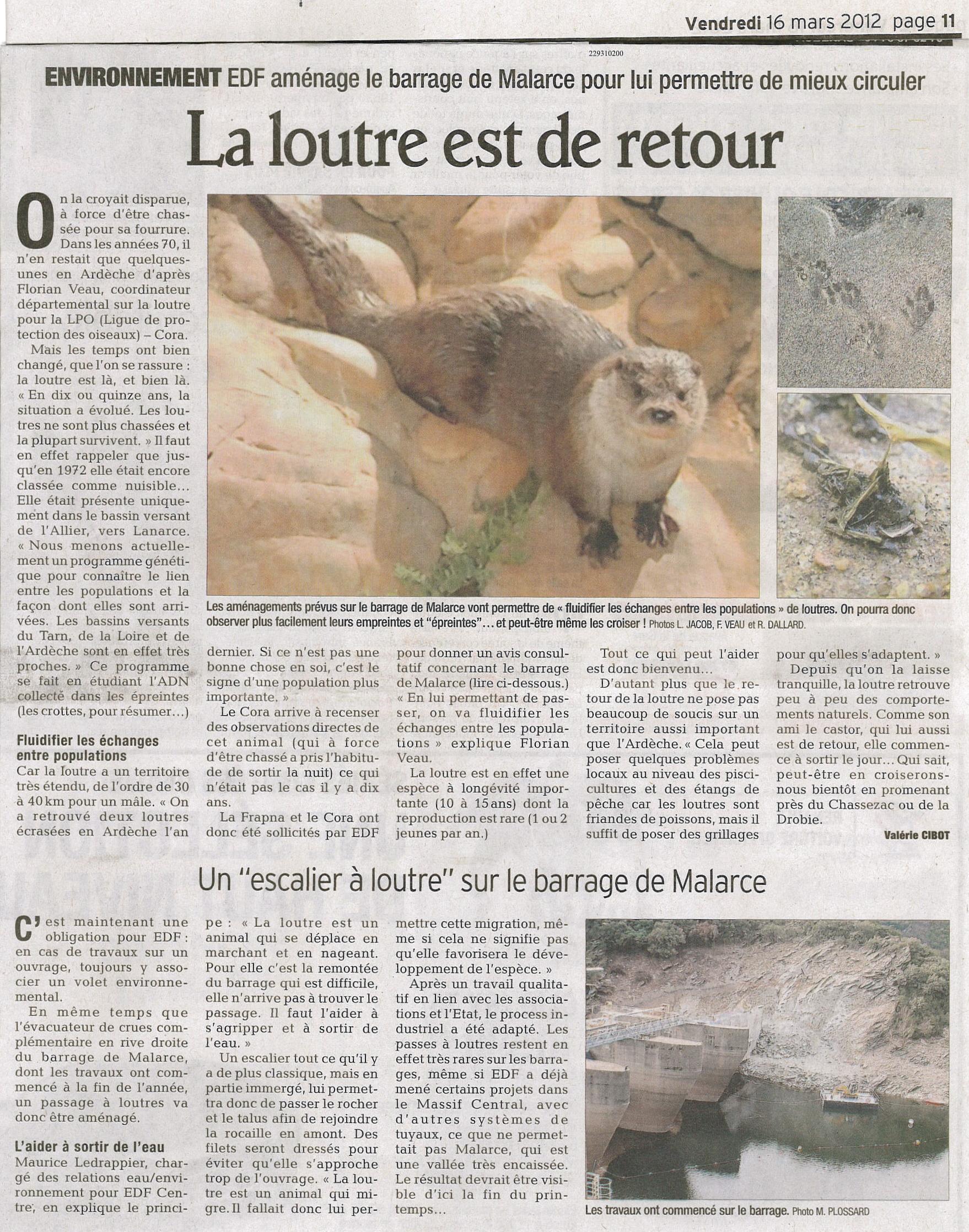https://cdnfiles2.biolovision.net/www.faune-ardeche.org/userfiles/ArticleLoutrebarrageMalarce2012.jpg