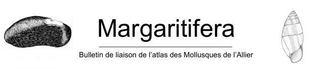 https://cdnfiles2.biolovision.net/www.faune-auvergne.org/userfiles/Documentations/Margaratifera/Margaratifera.JPG