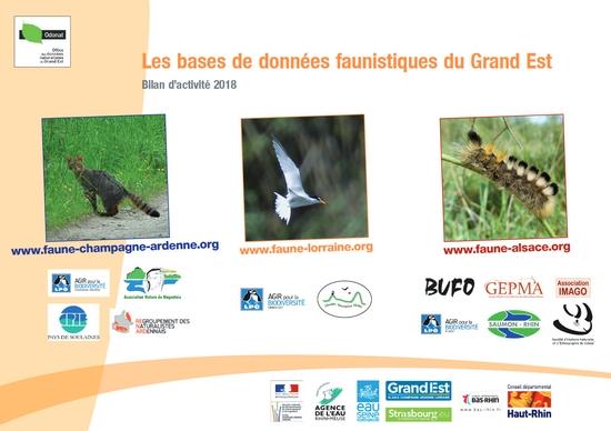 https://cdnfiles2.biolovision.net/www.faune-champagne-ardenne.org/userfiles/Bilandactivite/BA2018.jpg