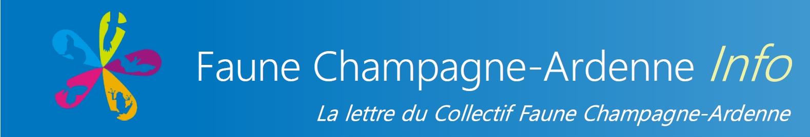 https://cdnfiles2.biolovision.net/www.faune-champagne-ardenne.org/userfiles/LettredinfoFCA/bandeaupresentationFauneChampagne-ArdenneInfo2.jpg