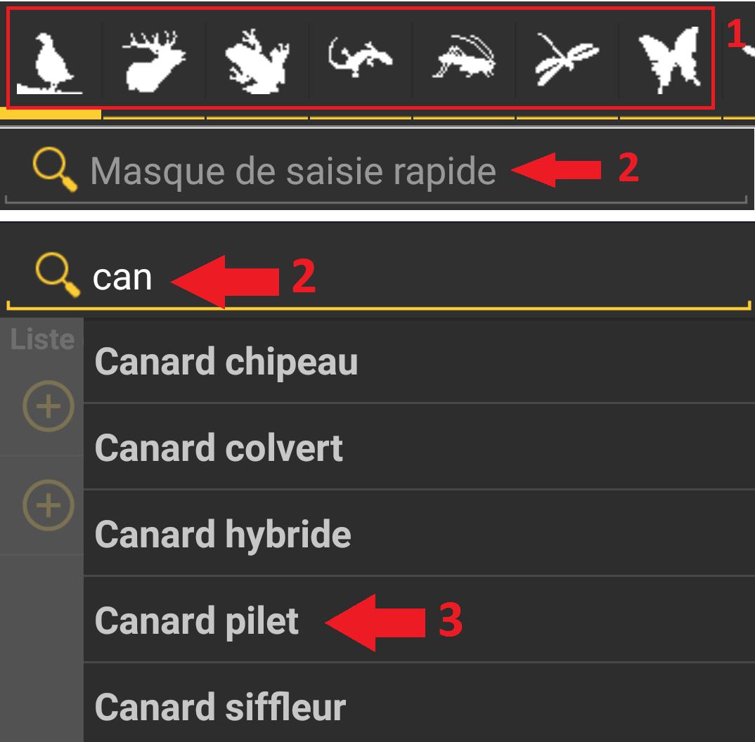 https://cdnfiles2.biolovision.net/www.faune-france.org/userfiles/ListeNaturaList/4-choix-sp.png