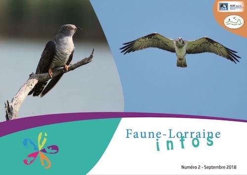 https://cdnfiles2.biolovision.net/www.faune-lorraine.org/userfiles/FLINFOS/NPUBLIES/Capturedcran2018-09-1919.04.47.jpg