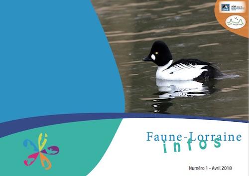 https://cdnfiles2.biolovision.net/www.faune-lorraine.org/userfiles/FLINFOS/NPUBLIES/Capturedcran2018-09-1919.11.31.jpg
