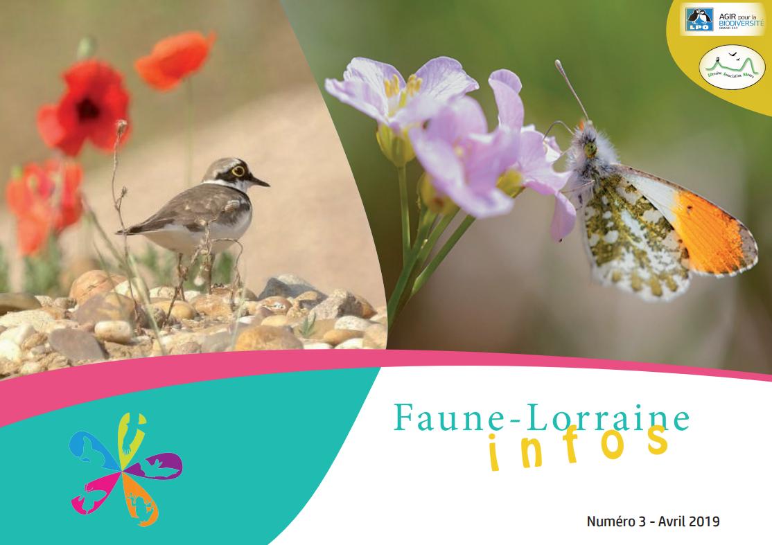 https://cdnfiles2.biolovision.net/www.faune-lorraine.org/userfiles/FLINFOS/NPUBLIES/Capturedcran26.png