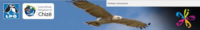 https://cdnfiles2.biolovision.net/www.faune-lorraine.org/userfiles/PORTAILSNATIONAUX/Missionrapaces.jpg