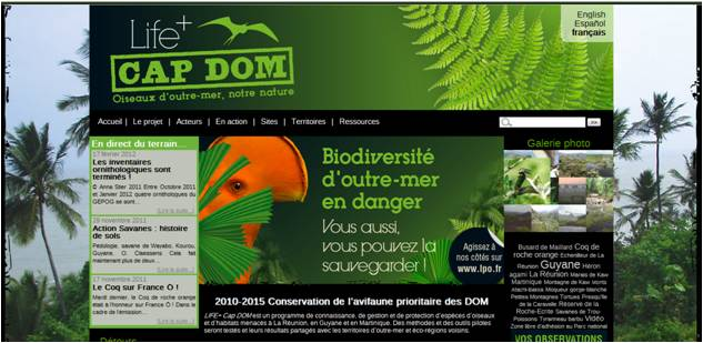 https://cdnfiles2.biolovision.net/www.faune-martinique.org/userfiles/sitenetimage_1.jpg