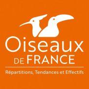 https://www.oiseauxdefrance.org/