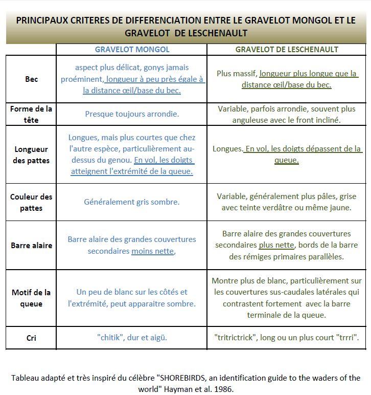 https://cdnfiles2.biolovision.net/www.faune-reunion.fr/userfiles/lecoindunaturaliste/tableaugravelots.JPG