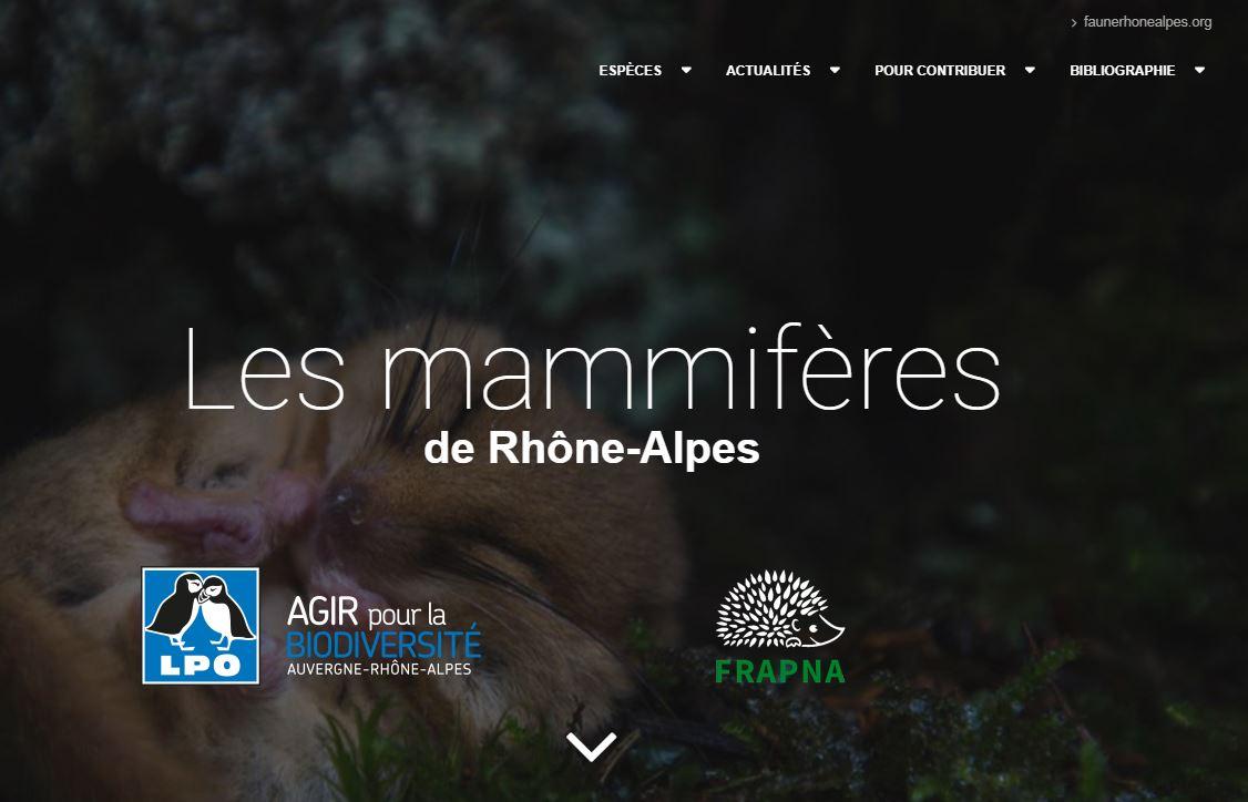 https://cdnfiles2.biolovision.net/www.faune-rhone.org/userfiles/Documents/AtlasMammif/CaptureAccueilPortailMammif.JPG