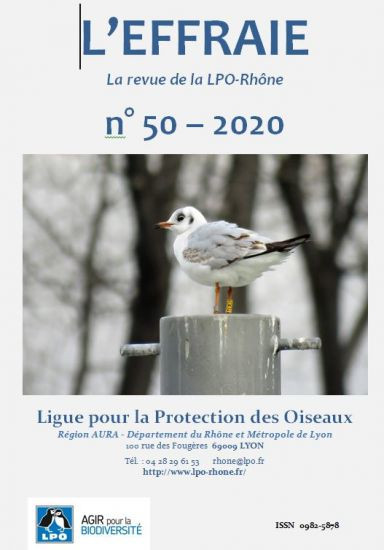 https://cdnfiles2.biolovision.net/www.faune-rhone.org/userfiles/Documents/Effraierevue/Effraie50/image-couv-50-4846.jpg