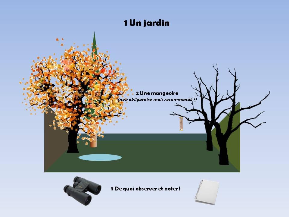 https://cdnfiles2.biolovision.net/www.faune-rhone.org/userfiles/OiseauxDesJardins/TutoProtocole/PresentationProtocole1.JPG