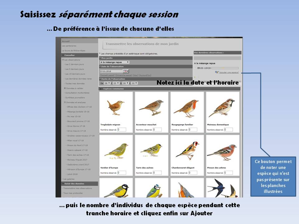 https://cdnfiles2.biolovision.net/www.faune-rhone.org/userfiles/OiseauxDesJardins/TutoProtocole/PresentationProtocole5.JPG