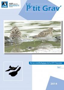 https://cdnfiles2.biolovision.net/www.faune-touraine.org/userfiles/MonDossier/Ptit-Gravcouv-212x300.jpg