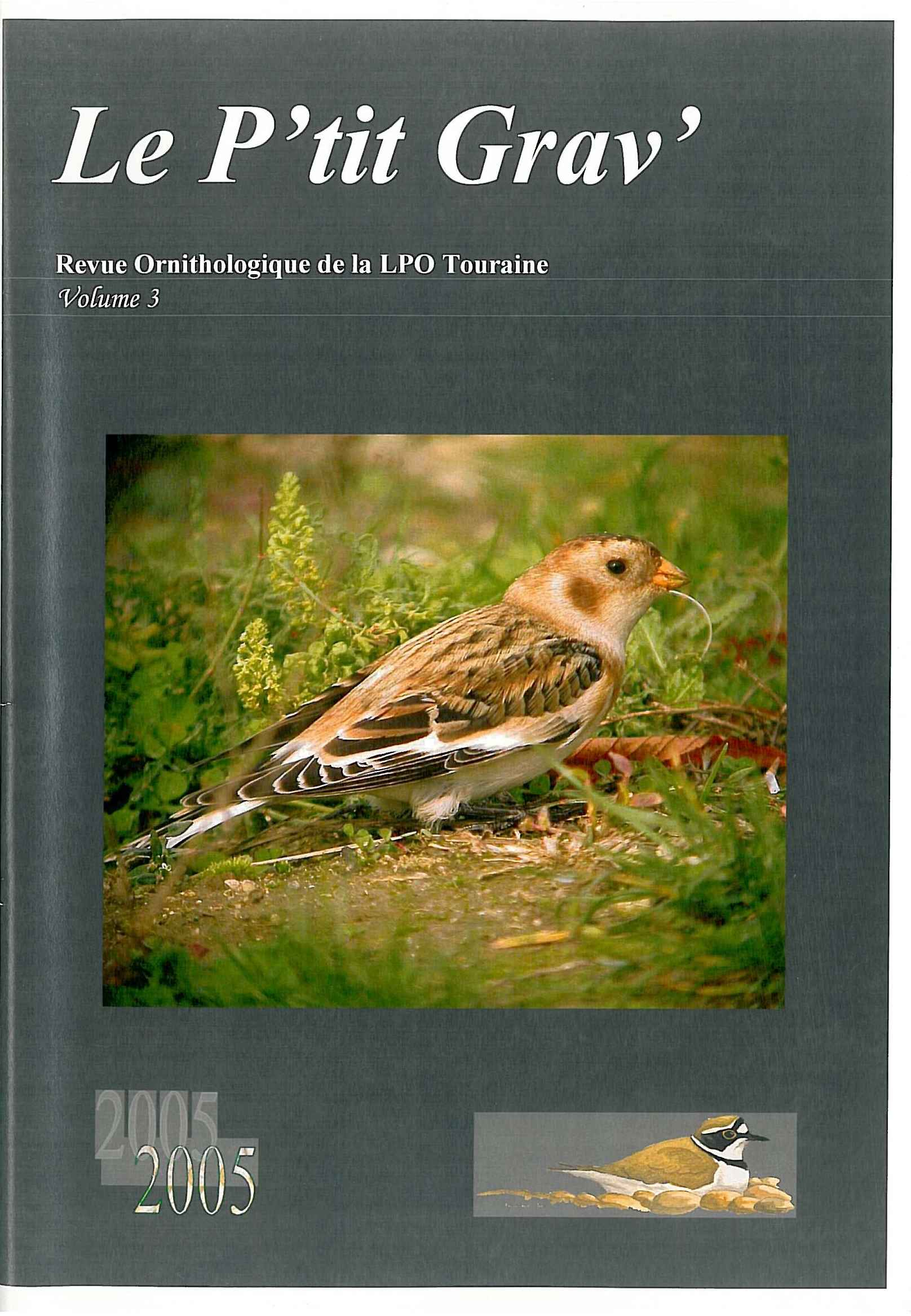 https://cdnfiles2.biolovision.net/www.faune-touraine.org/userfiles/MonDossier/PtitGravvol3.jpg