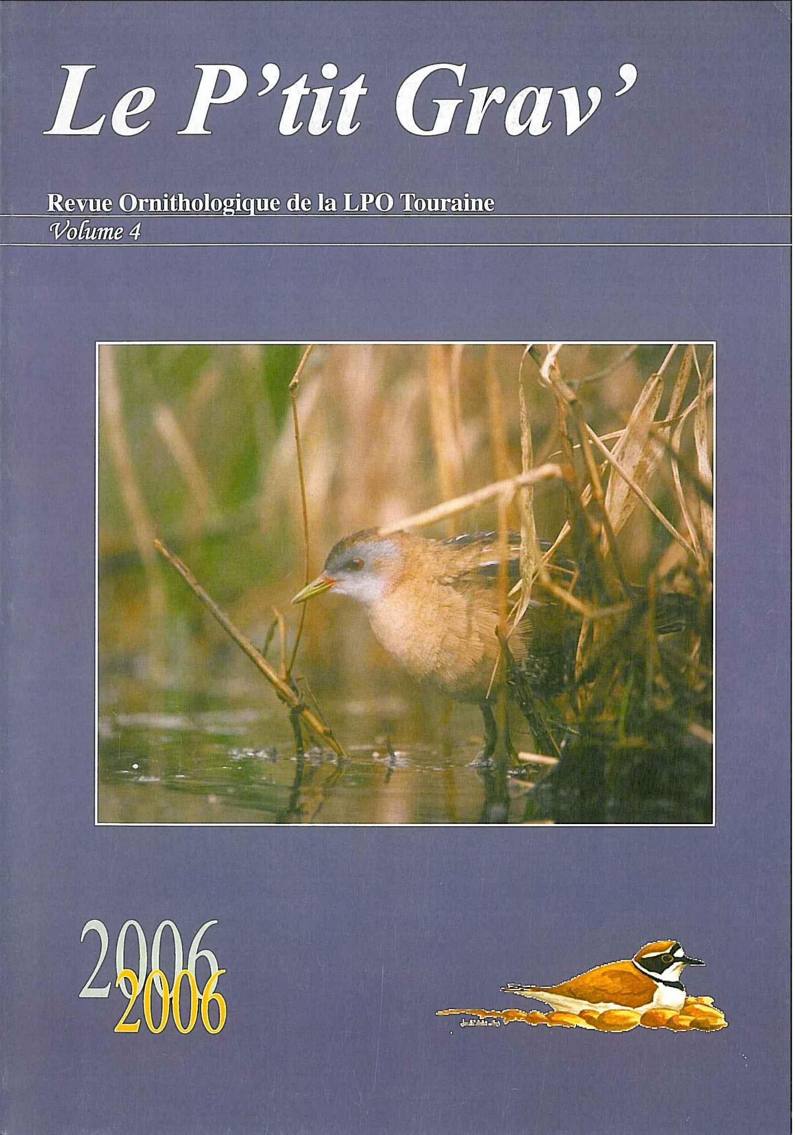 https://cdnfiles2.biolovision.net/www.faune-touraine.org/userfiles/MonDossier/PtitGravvol4.jpg