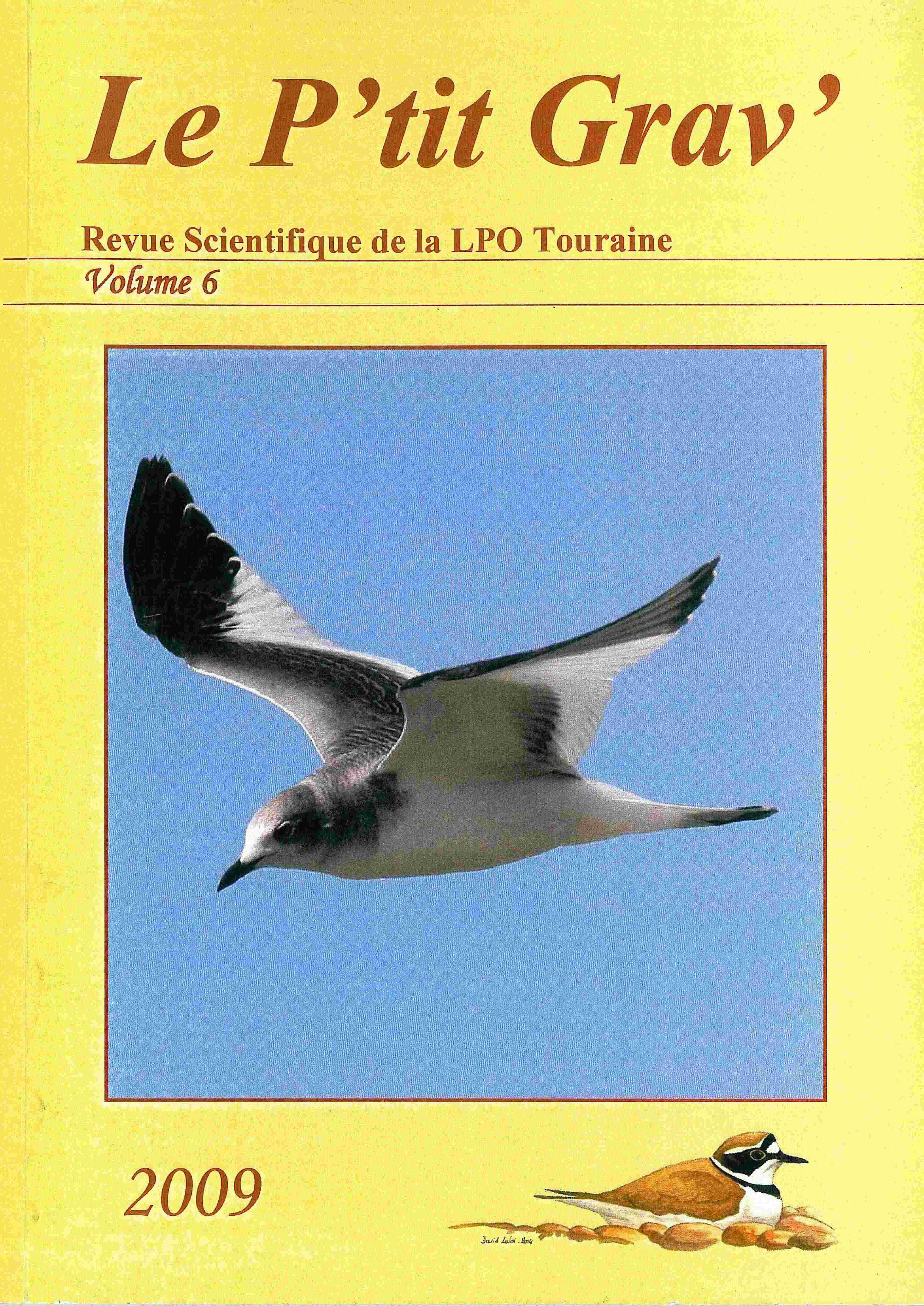 https://cdnfiles2.biolovision.net/www.faune-touraine.org/userfiles/MonDossier/PtitGravvol6.jpg