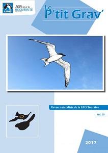 https://cdnfiles2.biolovision.net/www.faune-touraine.org/userfiles/PtitGravvol10couvimp-1-9993.jpg