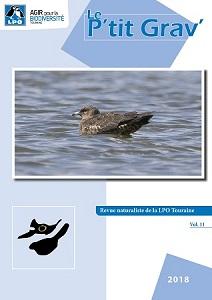 https://cdnfiles2.biolovision.net/www.faune-touraine.org/userfiles/PtitGravvol11couv.jpg