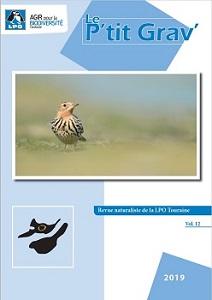 https://cdnfiles2.biolovision.net/www.faune-touraine.org/userfiles/PtitGravvol12couv.jpg