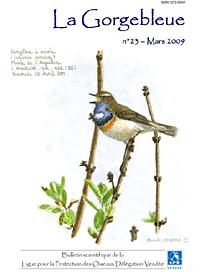 https://cdnfiles2.biolovision.net/www.faune-vendee.org/userfiles/Gorgebleue23/Capture.JPG