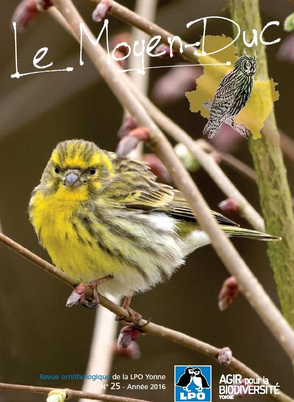 https://cdnfiles2.biolovision.net/www.faune-yonne.org/userfiles/LeMoyenduc/Sanstitre.jpg