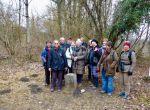 Ambiances hivernales dans les bois de Chancy  -  Samedi 23 février 2019