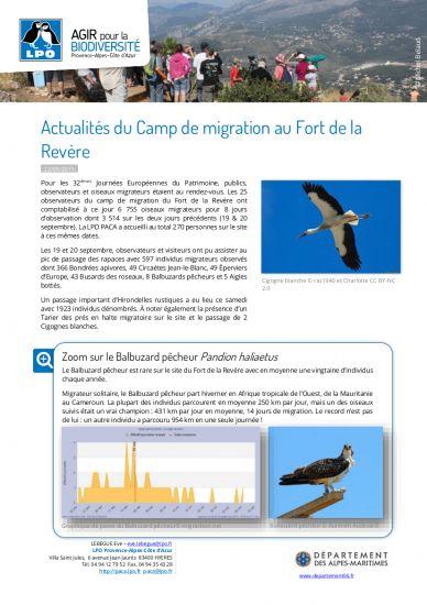 Toutes les nouvelles - www.migraction.net cae7fc296b5