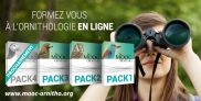 https://www.lpo.fr/agir-a-nos-cotes/le-mooc-ornitho