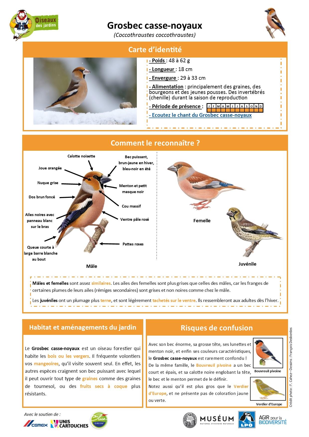https://cdnfiles2.biolovision.net/www.oiseauxdesjardins.fr/userfiles/Fichesespces/FicheespceGB.pdf
