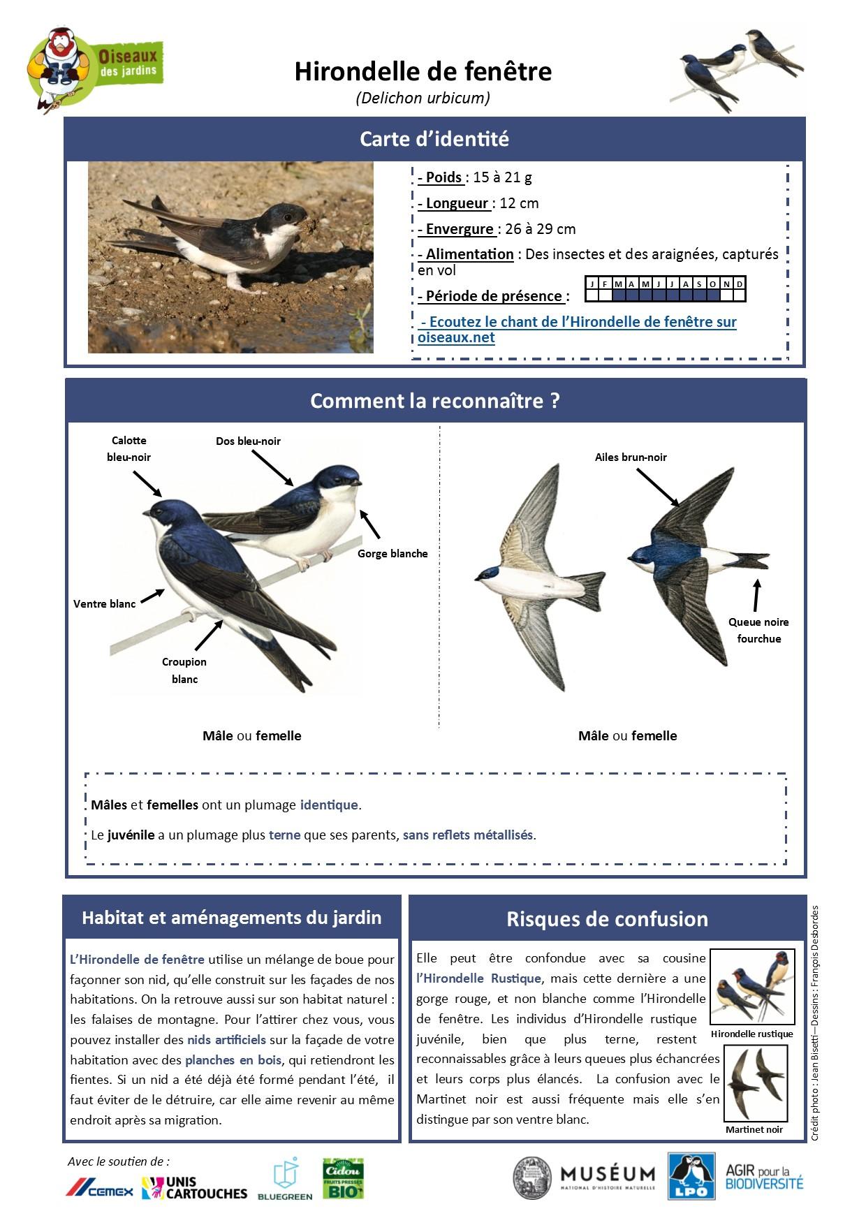 https://cdnfiles2.biolovision.net/www.oiseauxdesjardins.fr/userfiles/Fichesespces/FicheespceHF.pdf