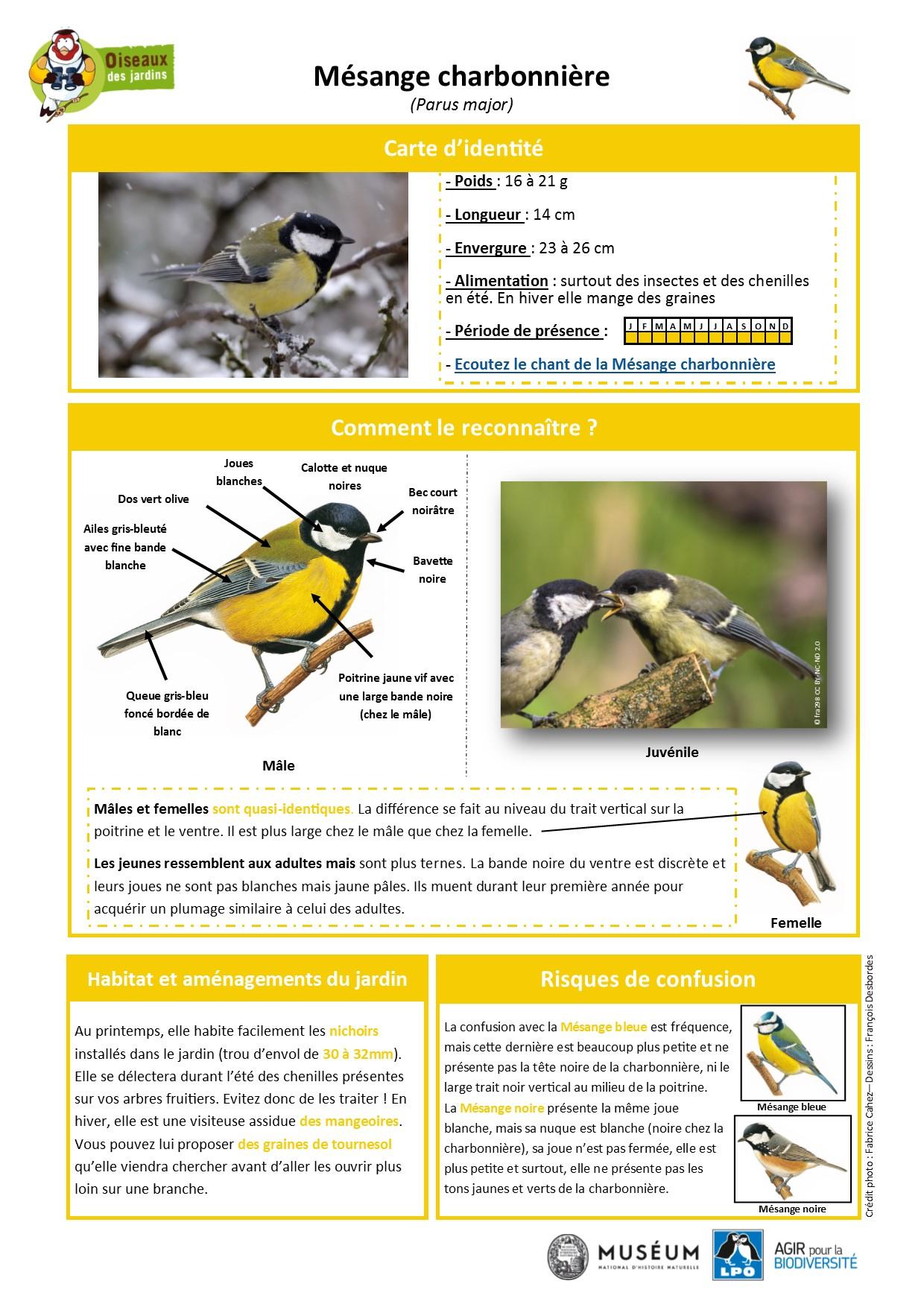 https://cdnfiles2.biolovision.net/www.oiseauxdesjardins.fr/userfiles/Fichesespces/FicheespceMC.pdf