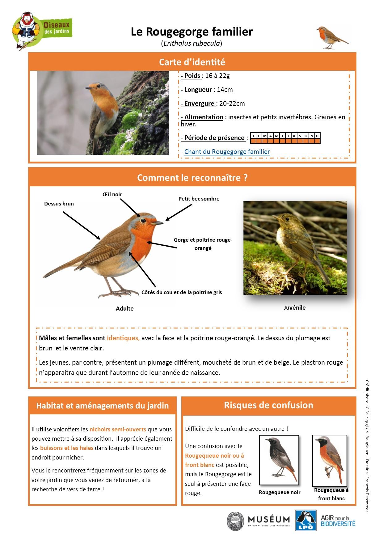 https://cdnfiles2.biolovision.net/www.oiseauxdesjardins.fr/userfiles/Fichesespces/FicheespceRGF.pdf