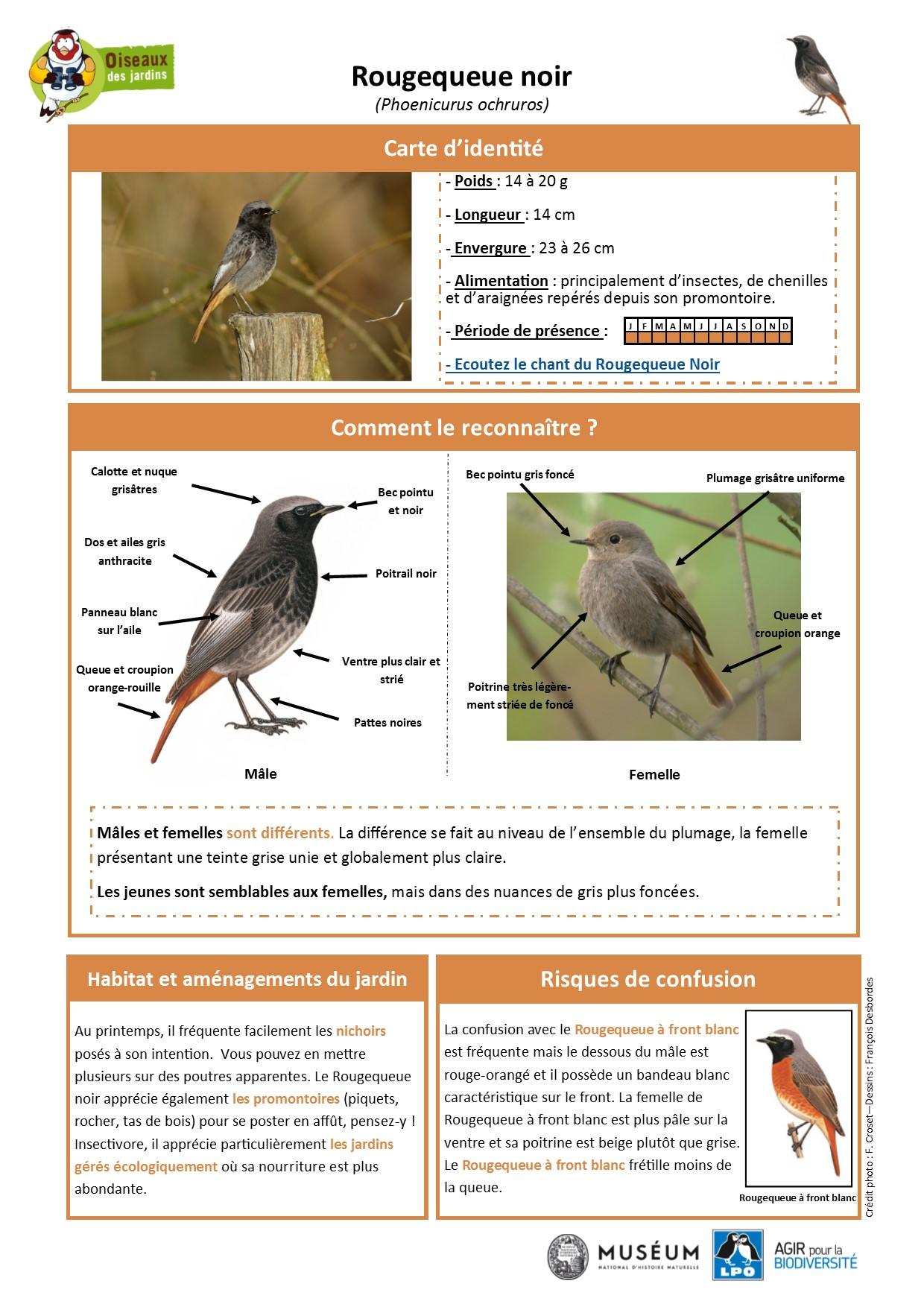 https://cdnfiles2.biolovision.net/www.oiseauxdesjardins.fr/userfiles/Fichesespces/FicheespceRQN.pdf